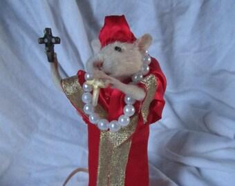 taxidermy rat curiosity cardinal taxidermy cabinet of curiosities odditties rat