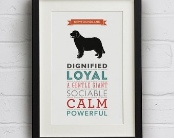 Newfoundland Dog Breed Traits Print - Newfoundland Gift