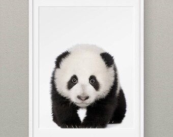 Forest Animals Set Panda Wall Prints, Forest Nursery Wall Art, Woodlands Animal Nursery Prints, Animal Nursery Decor, Baby Panda - Panda
