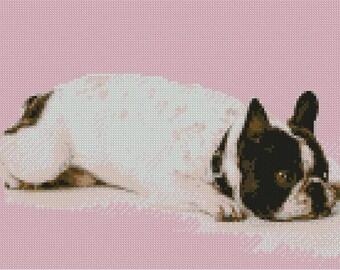 French Bulldog Counted Cross Stitch Kit