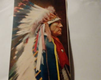 Sioux Chief Troilene Indian series Post Card unused