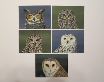 Set of 5 ACEO's from Owl Series by Ann Kelly