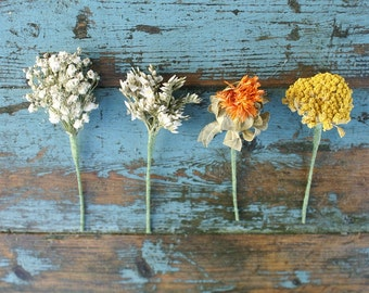 Sunset Dried Flower Wired Stems Buttonholes, Hair Set of 6