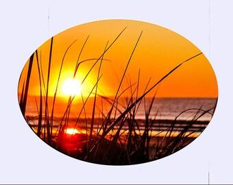 sm Suncatcher -OOB Grass