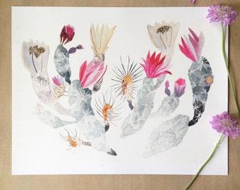 Engelmann's Hedgehog Cactus  - Larger Archival print