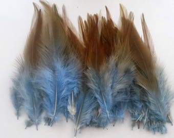 set of 50 mixed blue feathers 10-15cm