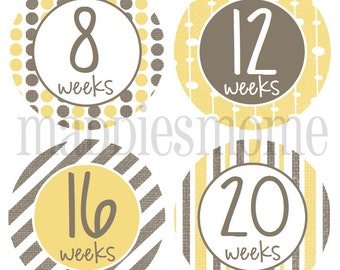 Weekly Pregnancy Stickers, Belly Stickers, Baby Bump Stickers, Maternity Stickers, Month Stickers, Baby Shower Gift (Yellow and Gray)