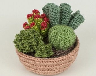 PDF Succulent Collection 1, four realistic potted plant CROCHET PATTERNS