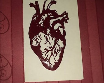 Anatomical Human Heart decal