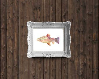 Rainbow Trout Watercolor Painting - art print