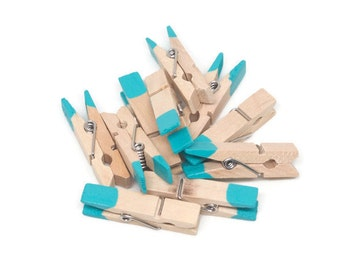 10 Mini clothespin, Mini Clothes Pin,Mint,Aqua,Blue Clothespin,Colored Clothespin