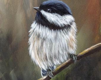Bird Art - Bird Painting - Black Capped Chickadee -SFA- Original Wildlife Acrylic Painting - Bird lover Gift - Wall Art -  Realistic Bird