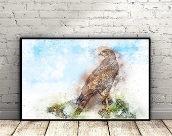 Bird Watercolour Print, Falcon, Bird Painting, Fine Art Print, Falcon Print, Falcon Painting, Home Decor, Wall Art, Gifts