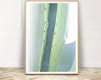 Agave Desert Wall Art,Cactus Print,Western Wall Decor,Botanical Home Decor,Desert photography,Instant Download,Cactus Printable,Desert Print