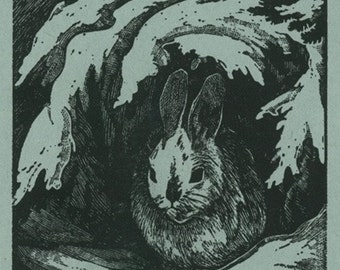 Nature Magazine - View of a Bunny under a Snowy Branch (Art Prints available in multiple sizes)