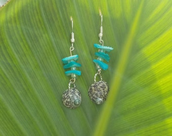 Silver Fishhook Earwires with Beached Shell with Turquoise Shell Pieces