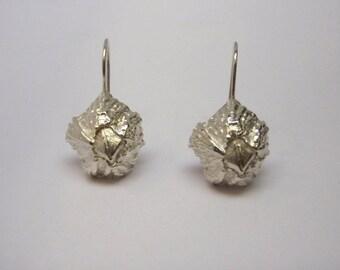 Barnacle Earrings in Sterling Silver
