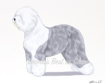 Old English Sheepdog Dog - Archival Quality Art Print - AKC Best in Show Champion - Breed Standard - Herding Group - Original Art Print
