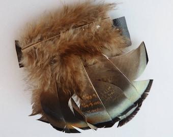 Feathered barrette, turkey feathers, Native hair piece, regalia, dance attire, native american
