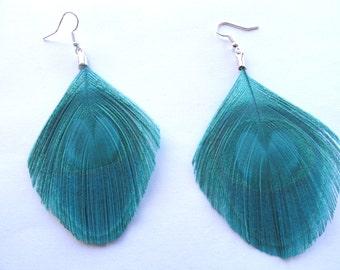 JILL in Aqua Blue Peacock Feather Earrings