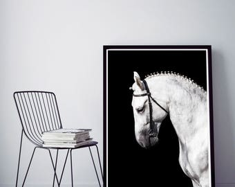 50%OFF,  Horse Print Black and White Wilderness Wall Art Poster Photo, Horse Decor Nursery Art Printable Art