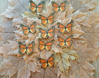 Orange Monarch Card Stock Butterflies set of 12