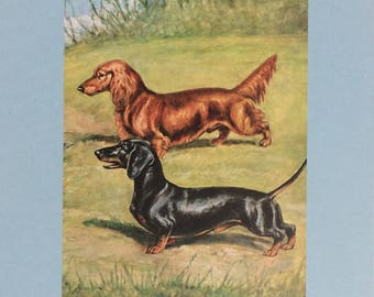 1940's Edwin Megargee Dachshund Dog Art Black & Red Mother's Day Gift!