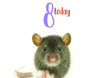 Happy 8th Birthday Rat Card Cute Baby Hooded Blue Grey Dumbo Rat Blank  Inside Photo Pet