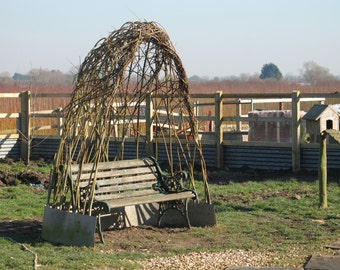 Living Willow structures for your garden domes arches