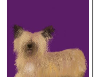 Skye Terrier Dog Illustration-Pop Art Print