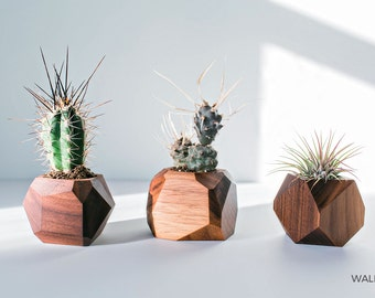 Geometric Air Plant / Succulent Pots - Set of 3 - Walnut & Maple