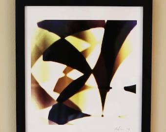 Framed signed 16 x 20 in art print.
