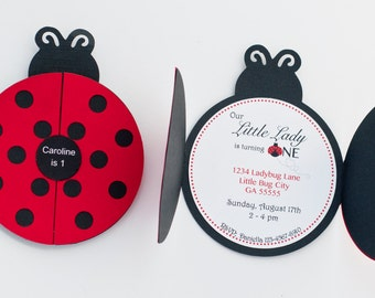Set of 12+ Ladybug Party Invitation, Ladybug 1st Birthday Party, Ladybug Invitation, C006