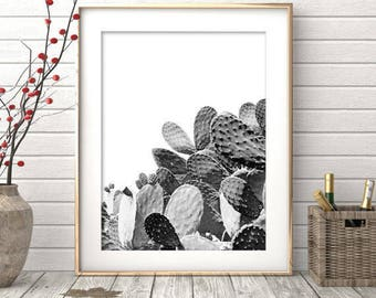 Cactus Print, Black and White Photography, Modern Minimalist, Cactus Photo Wall Art, Large Poster, Printable Download, Southwestern Decor