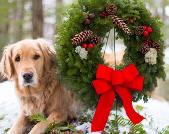 Fresh Christmas Wreath | Enjoy Scent of Real Balsam Pine | Outdoor Decor Lasts Holiday ~ Arrives Front Door in Red Gift Box