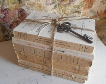 Antique French Book Bundle. Shabby Chic Vintage Book Stack of French Classic Literature. Instant 'Library Effect'. Ideal Boho Wedding Decor.