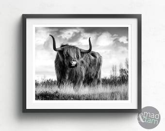 Highland Cow Wall Art, Highland Cow Print, Printable Art, Black And White Animal Wall Art, Cattle Print, Scottish Cow Art,  Farmhouse Decor