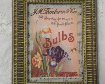 Vintage seed packet print on sheet music/vintage flower print on sheet music/OOAK home decor