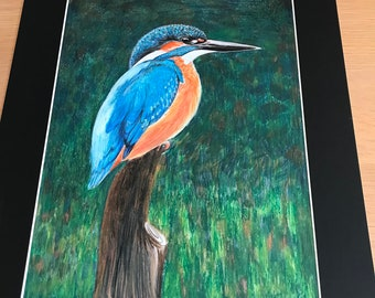 Original Artwork, Oil Pastel Drawing of a Kingfisher.