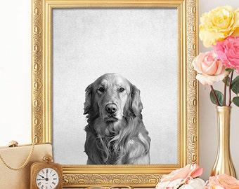 Animal Portrait Dog - 8x10 - Dog Print, Dog Wall Decor, Dog Wall Art, Dog Art, Dog Printable, Golden Retriever Decor