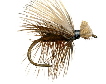 Fishing Fly - Brown Elk Hair Caddis - 5 x 7 watercolor print by Cindy Day