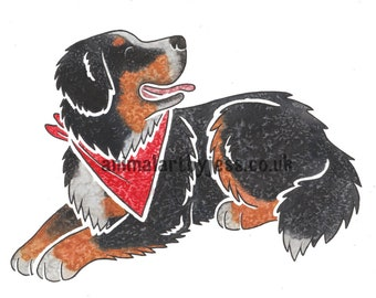 BERNESE MOUNTAIN DOG - Berner Sennenhund bmd dog original watercolour and ink cartoon, by York artist J Chappell, perfect gifts dog lovers