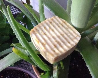 Calendula Shea, bar soap