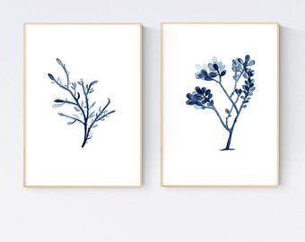 Indigo Blue Seaweed Prints Set of Two, Marine Plant Wall Art, Coastal Illustration, Reproduction Seaweed, Blue Beach House Decor