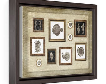 Fish and shells - Horizontal Framed Premium Gallery Wrap Canvas Size: 10″ × 8″