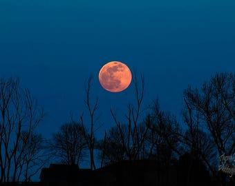 Caress The Moon