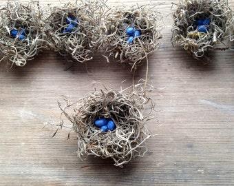 Miniature MINI Birds Nest W/ Blue Eggs - Set of 10 - Craft Supply - Shower Favors