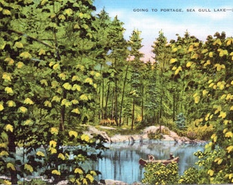 Sea Gull Lake, Minnesota, Going to Portage - Vintage Postcard - Postcard - Unused (NN)