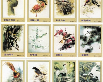 Bird Painting MATCHBOX LABELS - 10 Asst label by Chinese artist Zeng Xiao Lian  - NOS