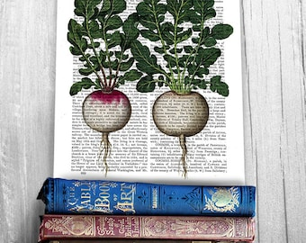 Kitchen print -  Vintage radishes - Gardening gift Vegetable print Kitchen art Dining room decor Food art Gift for chef Gift for cook